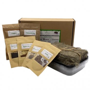 Набір для вирощування Аматор, 6 видів насіння